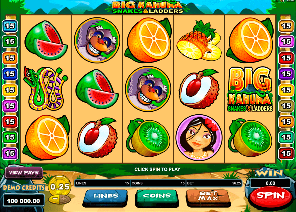 big kahuna snakes and ladders microgaming casinospil online