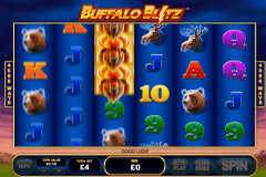 buffalo blitz playtech casinospil online