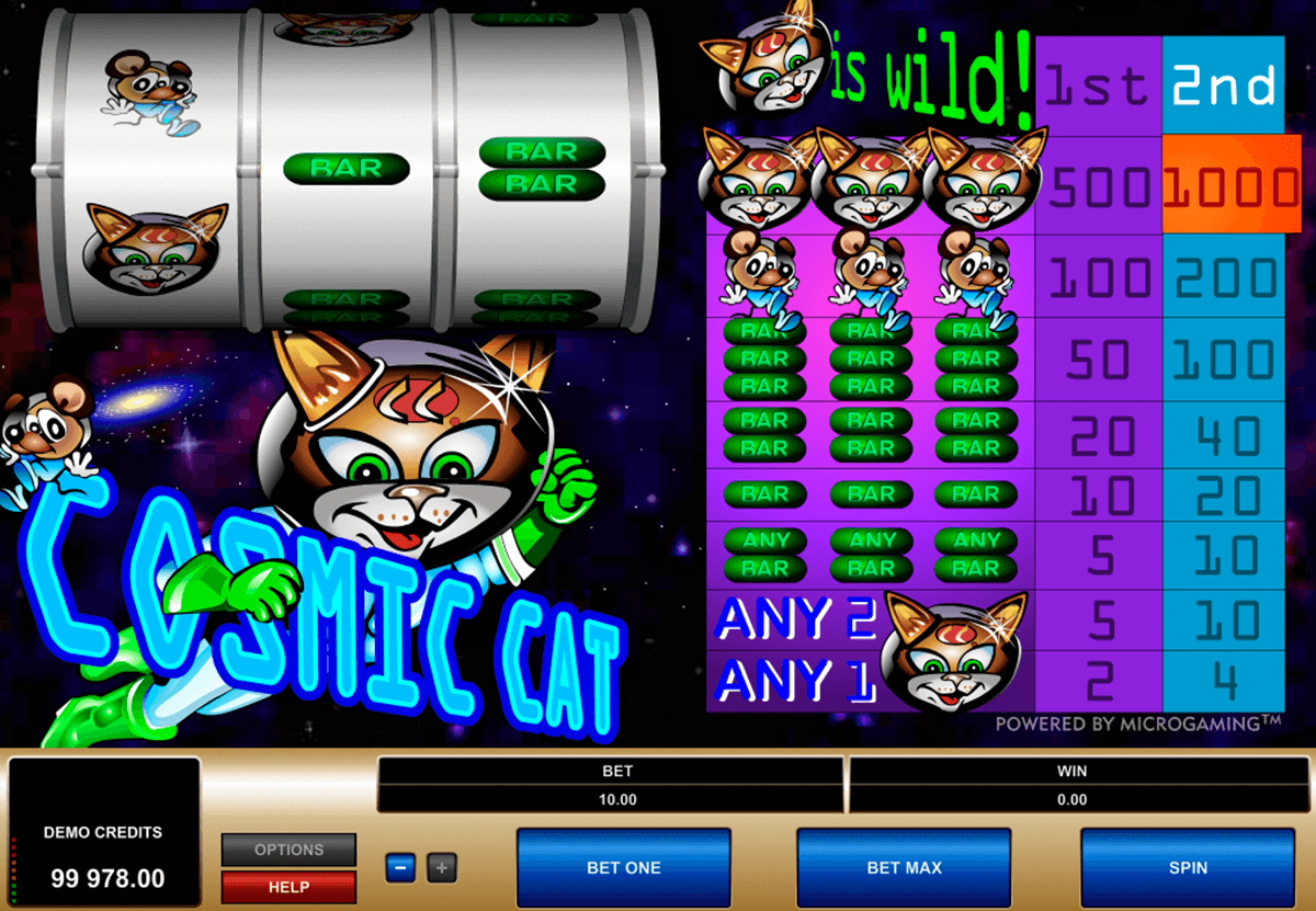 cosmic cat microgaming casinospil online