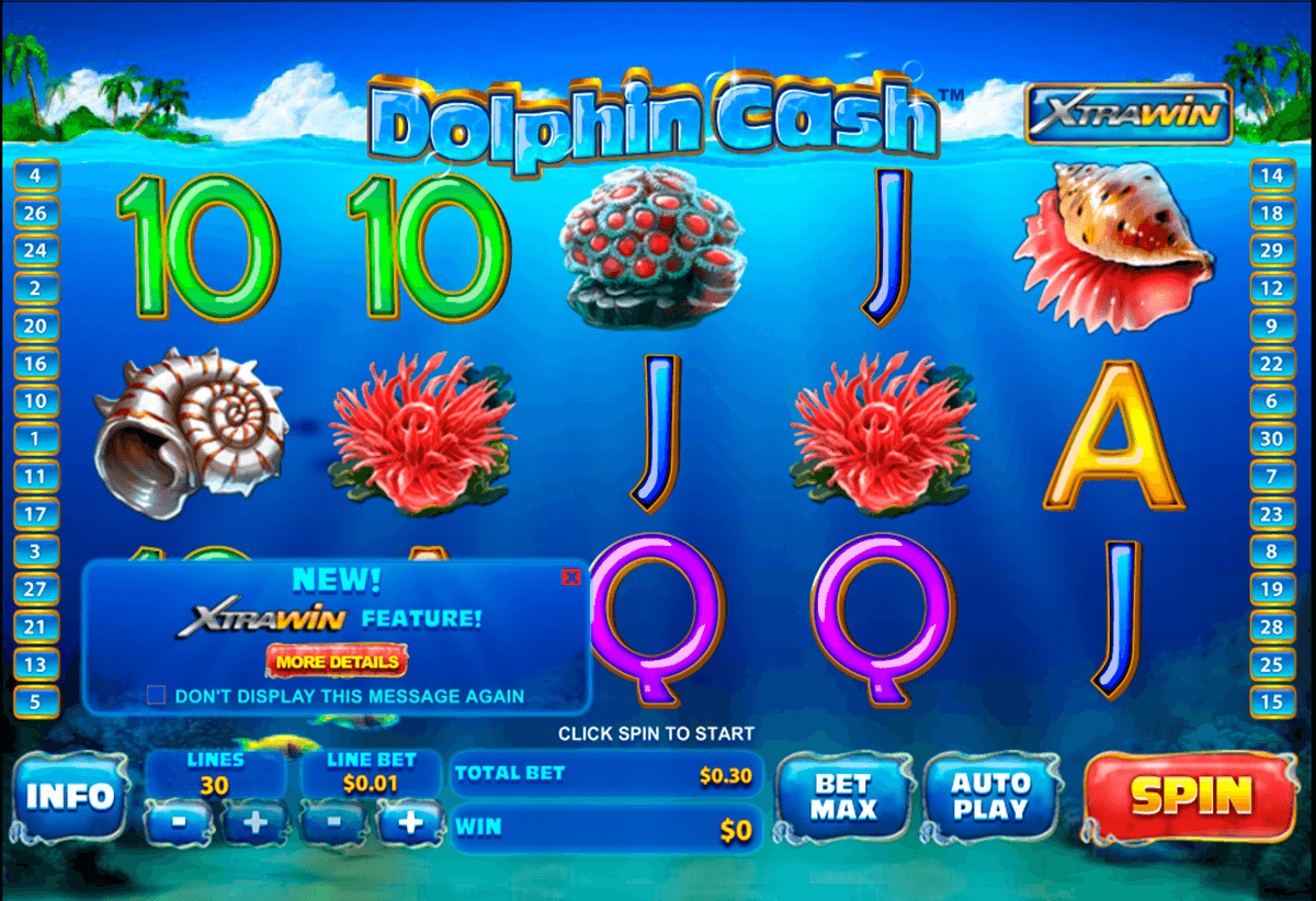 dolphin cash playtech casinospil online