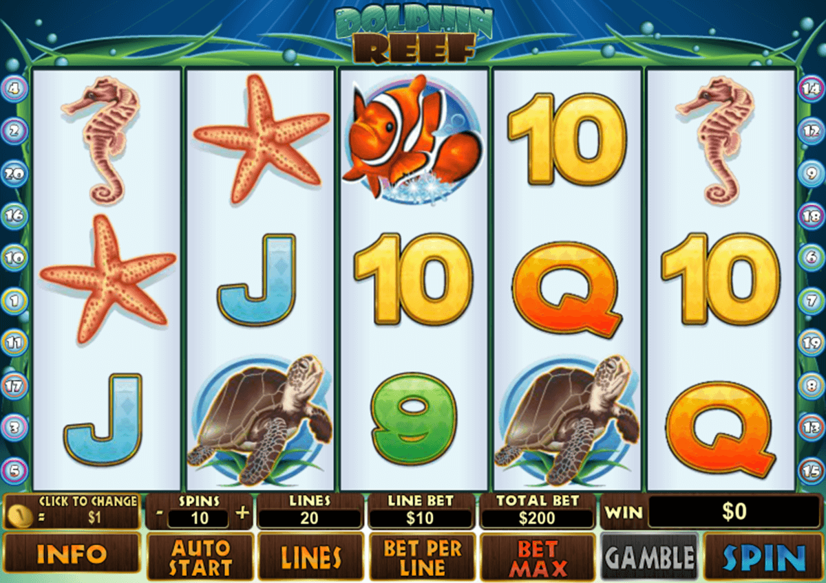 dolphin reef playtech casinospil online
