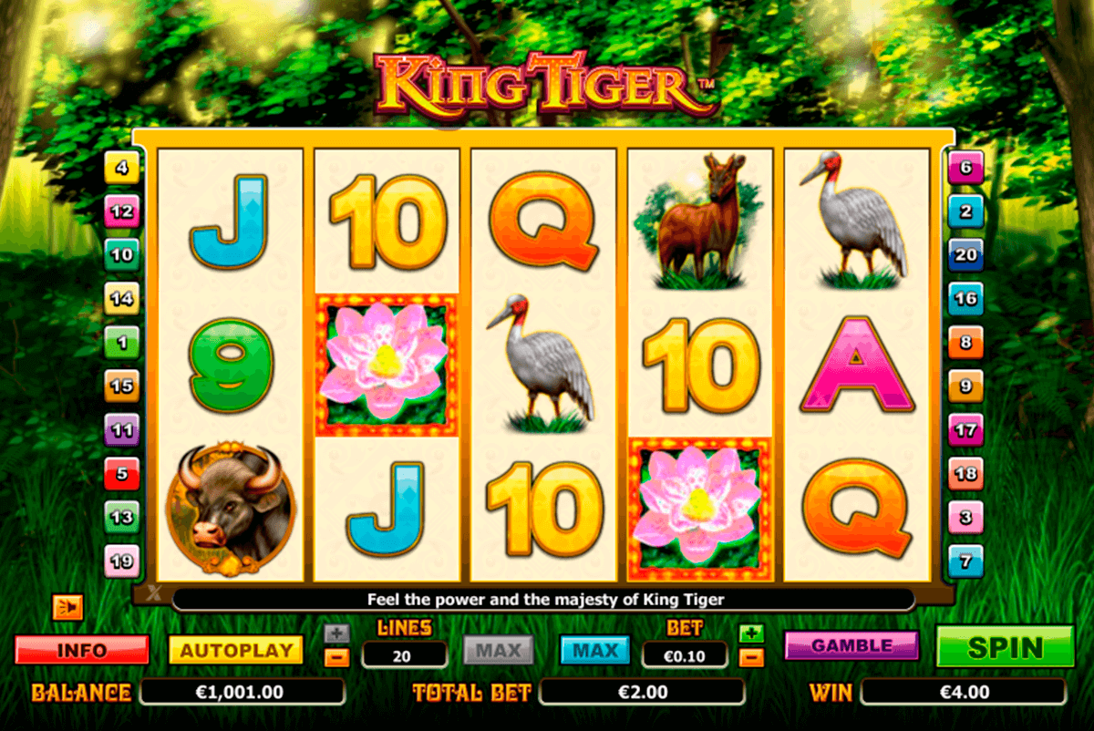 king tiger nextgen gaming casinospil online