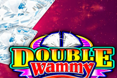 logo double wammy microgaming spillemaskine