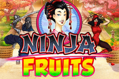 logo ninja fruits playn go spillemaskine