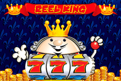 logo reel king novomatic spillemaskine