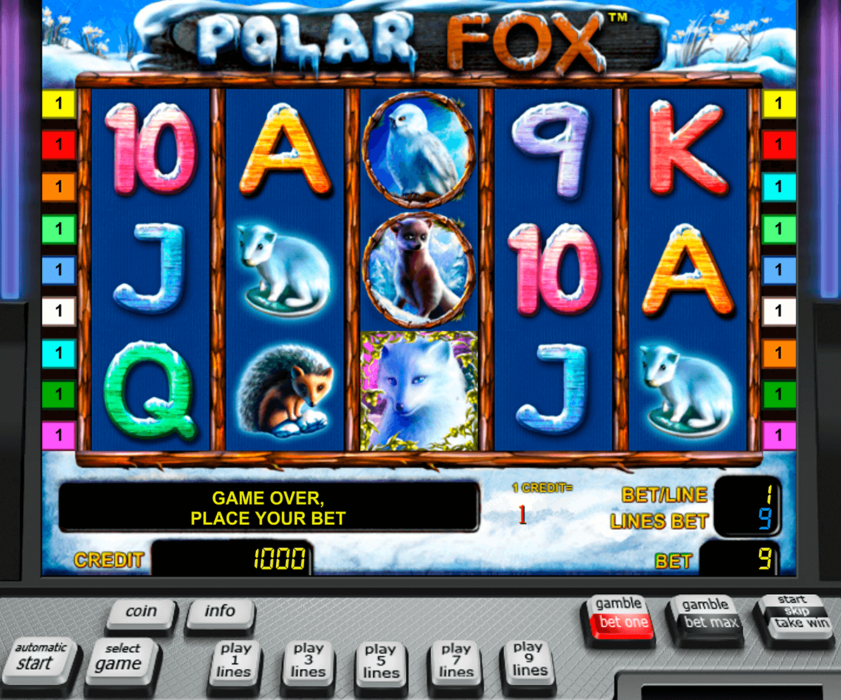 polar fox novomatic casinospil online