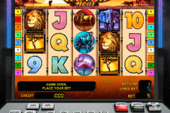 safari heat novomatic casinospil online