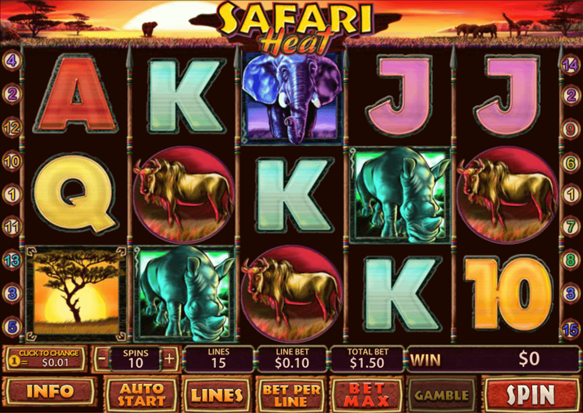 safari heat playtech casinospil online