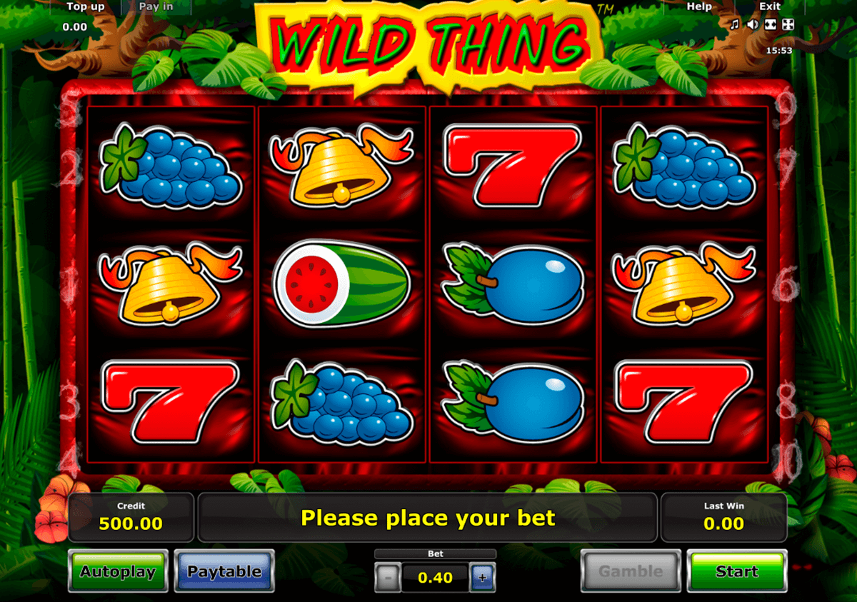 wild thing novomatic casinospil online
